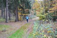 Herbstlanglauf-2014-klein-016